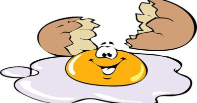 egg cholesterol 2